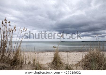пляж · облачный · день · небе · полный · серый - Сток-фото © tanya_ivanchuk