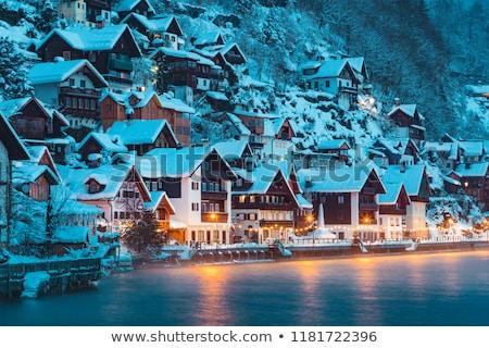 night view of hallstatt village stock photo © pixachi