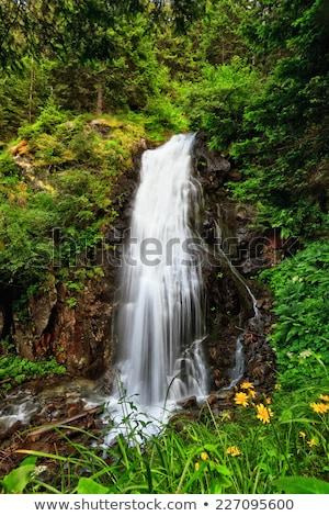 alpes · cascade · été · vue · belle · montagne - photo stock © antonio-s