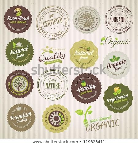 Foto stock: Alimentos · orgânicos · selos · grunge · vetor · coleção · comida
