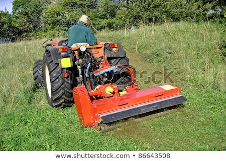 Faible tracteur pelouse jardin Photo stock © hanusst