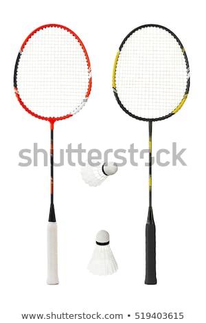 Badminton wykonywania gry obiektów zdrowych Zdjęcia stock © ozaiachin