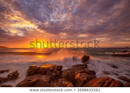 Foto stock: Outono · Austrália · moço · dourado · campo