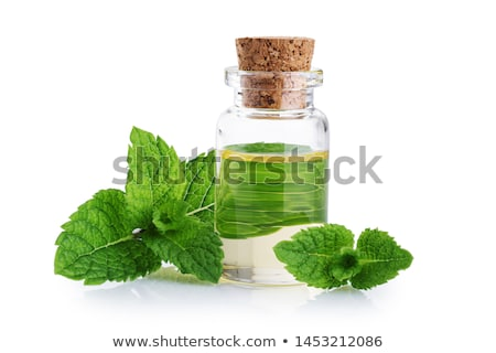 bottle with essence oil and mint herb isolated on white Stock photo © tetkoren