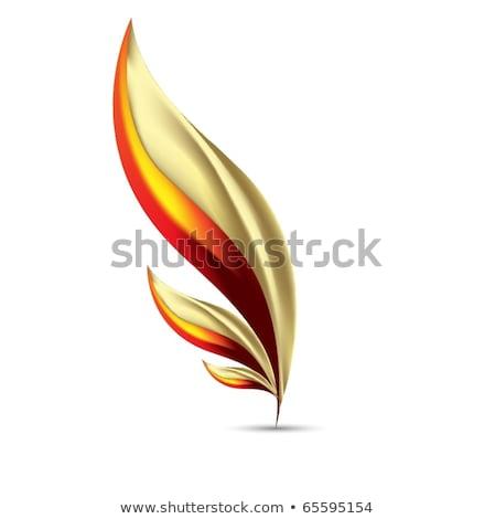 знак опасности вектора икона дизайна золото Сток-фото © rizwanali3d