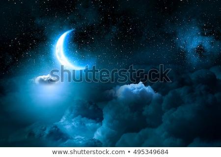 Foto stock: Buena · noche · ilustración · luna · tener · animales