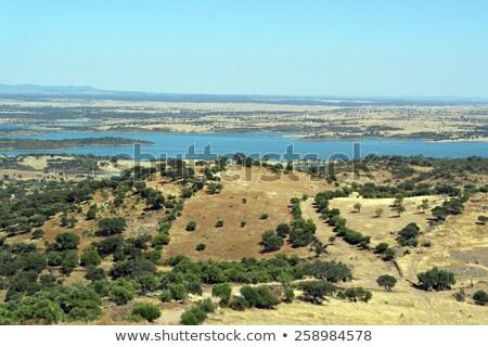 view over the alqueva portugal stock photo © compuinfoto