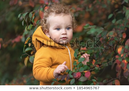 blue-eyed blond among yellow leaves Stock photo © Paha_L