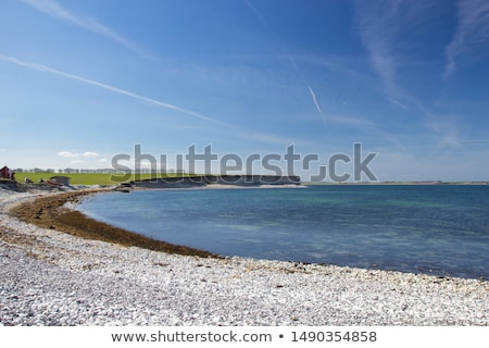 Dinamarca escena naturaleza mar tiza costa Foto stock © jeancliclac