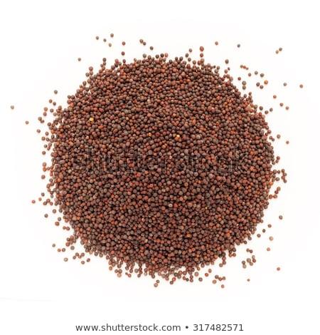 Top view of Organic brown mustard (Brassica juncea) Stock photo © ziprashantzi