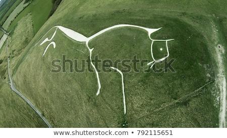 paard · silhouet · zonsondergang · illustratie · natuur · boerderij - stockfoto © klikk