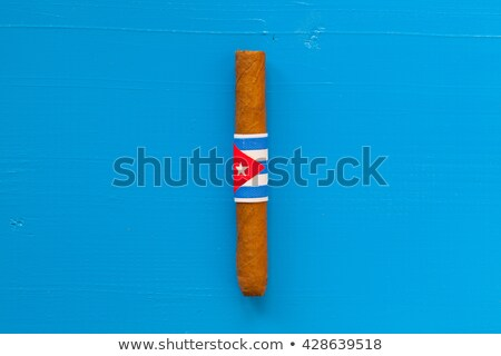 Detail of luxury Cuban cigar on the white table Stock photo © CaptureLight