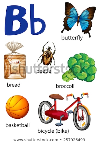 Things that start with the letter B Stock photo © bluering
