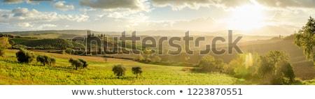 tuscany landscape at sunrise italy tuscan hills sun flare stock photo © photocreo