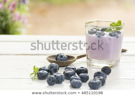 Yogurt Blue Berry and fresh berry on  wooden white table on background outdoor view.Close up. stock photo © Bigbubblebee99