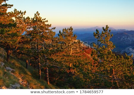 sunset in the mountains dinaric alps lovcen mountains montenegro stock photo © maxpro
