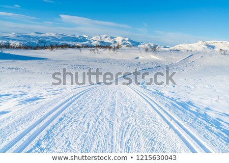 Belo ver esquiar cabana montanhas inverno Foto stock © kb-photodesign