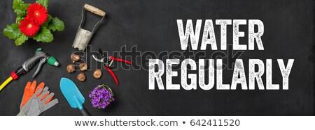 Zdjęcia stock: Ogród · narzędzia · ciemne · wody · kwiat · wiosną