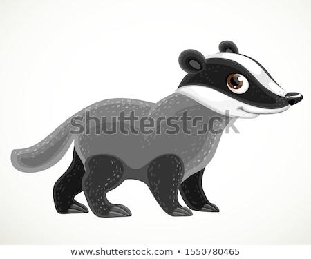 Cute sonriendo tejón Cartoon ilustración Foto stock © vectorikart