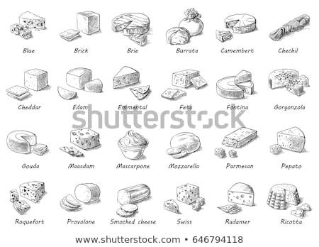 Wektora ilustrowany zestaw ser menu żywności Zdjęcia stock © Mamziolzi
