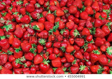 Aardbeien 3d illustration effect veld alpha kanaal Stockfoto © tracer