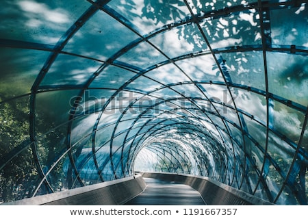 pathway of opportunity stock photo © psychoshadow