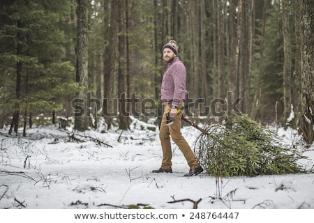 Man with Christmas tree in forest Stock photo © IS2