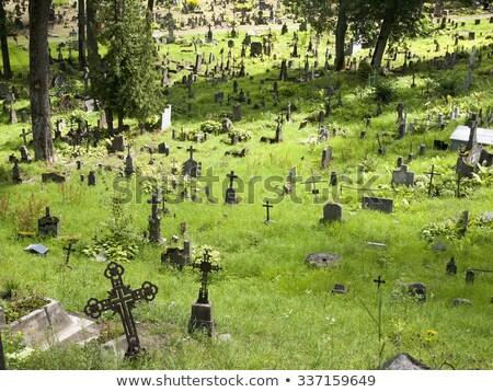 день · кладбище · американский · флагами · Соединенные · Штаты · смерти - Сток-фото © taigi