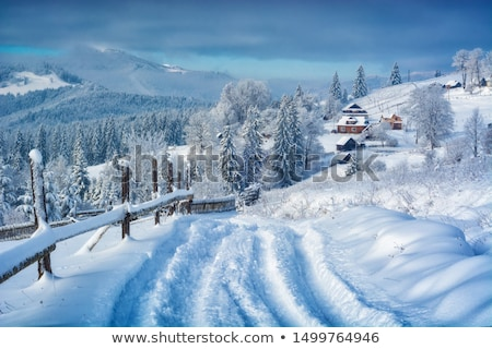 Stock photo: Road in winter forest. Snowcovered trees