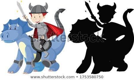 Elf paardrijden draak vector fantasie illustratie Stockfoto © ddraw