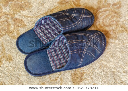 Pair of yellow slippers on rug Stock photo © IS2