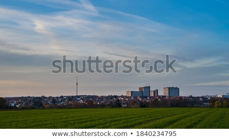 TV tower on green field Stock photo © Givaga