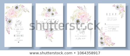 peony anemone invitation set stock photo © purplebird