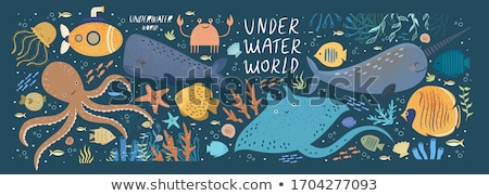 underwater world set shell and crab vector illustration stock photo © popaukropa