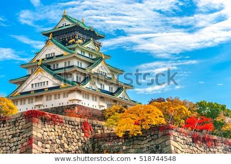 Осака · замок · Япония · дерево · здании · пейзаж - Сток-фото © kenishirotie