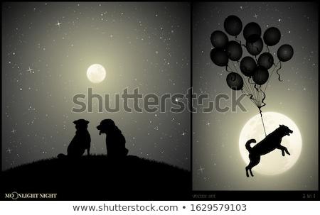 Cachorro perro luz de la luna ilustración luna estrellas Foto stock © adrenalina
