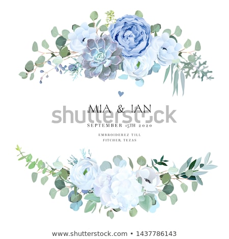 vector card with white rose and blue flowers stock photo © purplebird