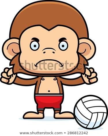 Cartoon enojado playa voleibol jugador mono Foto stock © cthoman