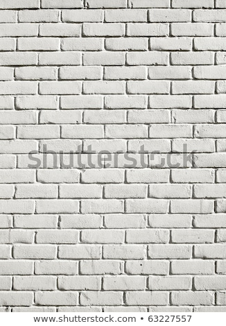 White wall coating texture close up. Stock photo © latent