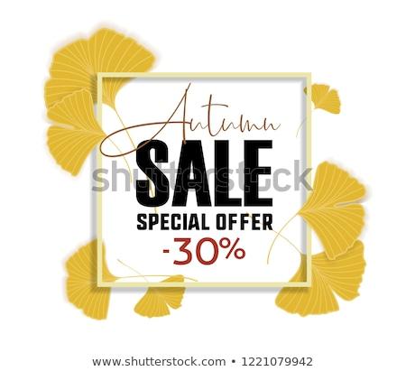Ginkgo biloba leaves. Sale banner. Yellow poster. Stock photo © odina222
