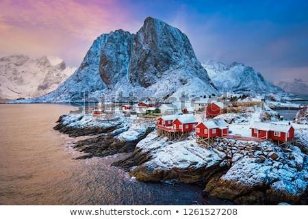 антенна · красивой · Норвегия · пейзаж - Сток-фото © cookelma