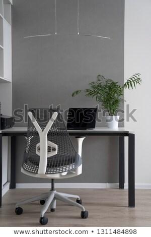 società · ufficio · angolo · moderno · desk · ortopedico - foto d'archivio © artjazz