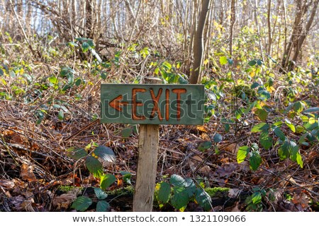 Painted wooden exit sign points left in woodland Stock photo © sarahdoow