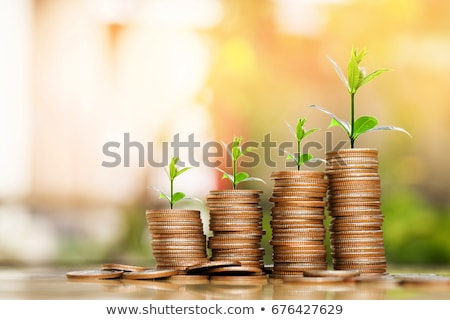 Coins stacks with a plants growing on the top. stock photo © animagistr