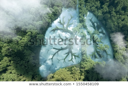 Stock photo: Ecology concept in the shape of a tree