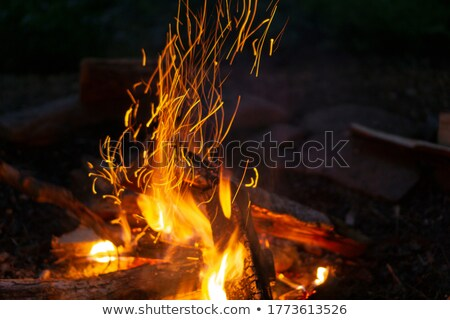 bonfire burning in the dark flame close up stock photo © unweit