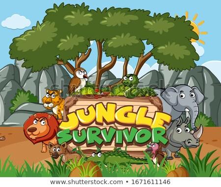 Rhino ramki scena ilustracja niebo trawy Zdjęcia stock © bluering