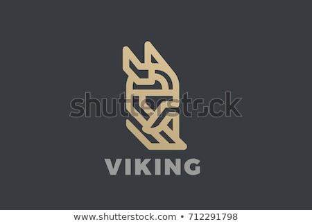 Forte guerreiro viking armadura Foto stock © jossdiim
