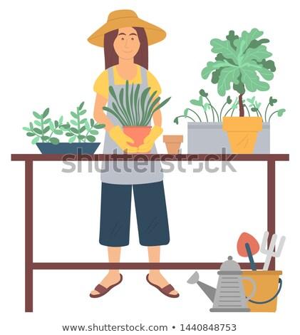 ガーデニング 趣味 工場 緑 ベクトル 女性 ストックフォト © robuart