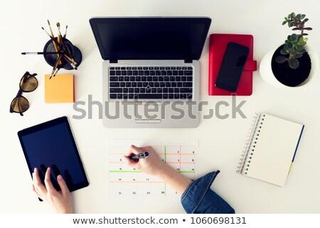 Mujer de negocios planes negocios semana cuaderno mujer Foto stock © ruslanshramko